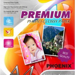 Phoenix Paper